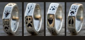 Animal Print Ring II by rgyoung