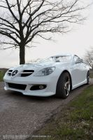 Mercedes SLK 2008 - W 1 by AnalyzerCro