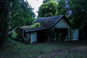Old Country Home by TomHorton100