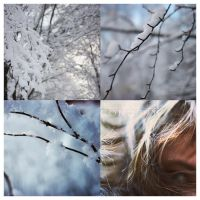 Winter by mnoo
