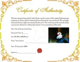 Certificate of Authenticity by SoraMidori