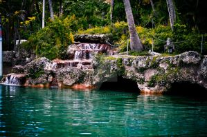 Venetian Pool - Coral Gables by Crazito
