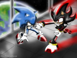 sonic and shadow by ZemlaSaga