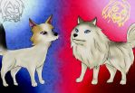 Benny and Luna, the two cutest dogs on YouTube by Hana-no-Kon