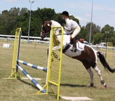 STOCK Showjumping 422 by aussiegal7