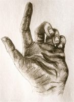 Charcoal - left hand by Trista-Willows