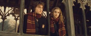 Harry and Hermione by Ivyti