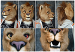 Xevian Lion by FarukuCostumes