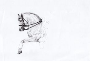 Step2. White horse by 88Laura88
