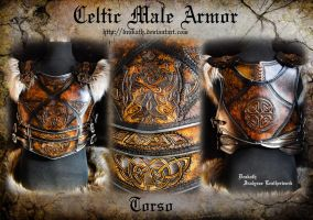 Celtic Male Armor : Torso by Deakath