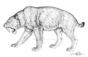 Silodon Saber Tooth Cat by wrelm