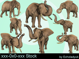 Elephants pack of 8 by xxx-0x0-xxx