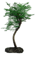 tree png by camelfobia