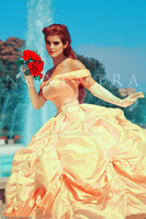 The Beauty ( Emma Watson ) by N0xentra