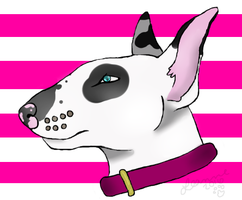 Bull Terrier by Rechuli