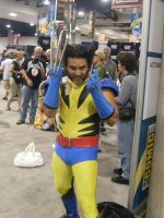 Wolverine at the Con pt 2 by mjac1971