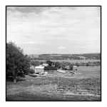 2015-150 The view at Vineyard View Winery by pearwood