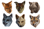 WOLF Headshots by savage