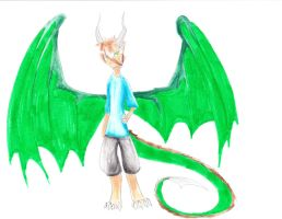 Request~ Devon the Dragonboy by Shane-Twilight