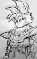 Son Gohan by The-Loner-030
