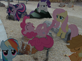 My Little Fluttershy: Freinds at the Park PART TWO by JudgementMaster