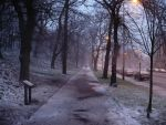 Royal Terrace Gardens - Winter by da8a