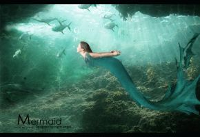 mermaid by MissNightAngel