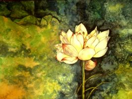 Waterlily in watercolor by YugeshPandey