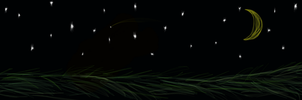Starlit Field by Flamey-the-Fox
