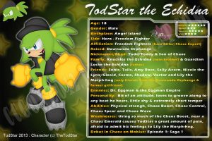 CM_Bday Gift: TodStar the Echidna ID by CCgonzo12