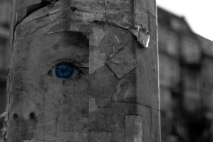 The poles have eyes... by Wilczoor
