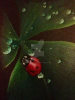 ladybird in the dark by 1997girl