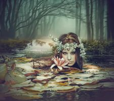 Waterlily by Amiltarea