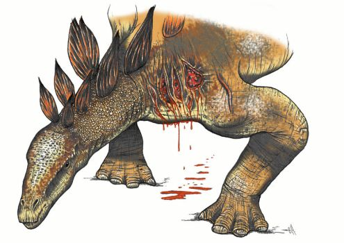 Stegosaurus dying color by Christoferson