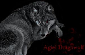 Agiel Dragowolf by blissfullyunstable