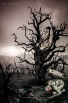Tree of the dead soul by BVFoto