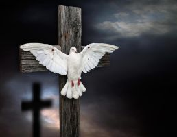 The Crucifixion of Peace by JulieMavros