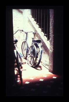 Bikes by tophyr