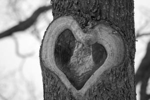 wooden heart by gothic-angel-zouza