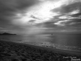 The Beauty Of Black And White by zachduval