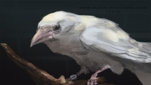 Spitpaint 82 - White Crow by mariofernandes