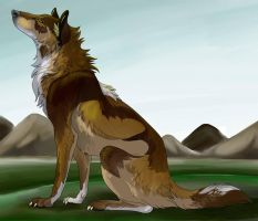 Wolf and forest. by Alphaattack800