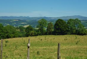 LES MONTS DU CANTAL by isabelle13280