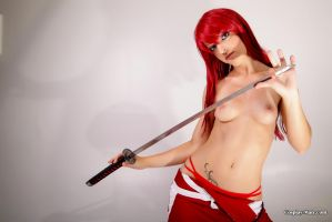 Erza breasts, try to touch at your own risk by pgmorin