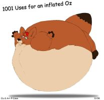 What todo with an inflated roo by ozkangaroo