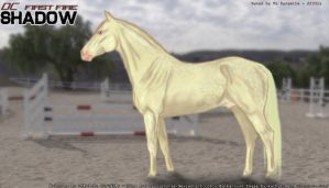 SHADOW - VirtualHorseRanch Dappled Cremello by LacieMelhart