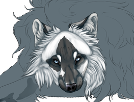 I can draw wolves again! :'D by toskurra