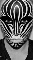 Zebra by Whimsical-Fairytales
