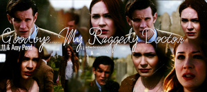 Goodbye...My Raggedy Doctor... by feel-inspired