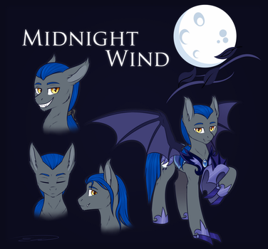 Midnight Wind | Commission by DoeKitty